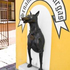 Senamiestį saugos verslininkų dovanotas šuo